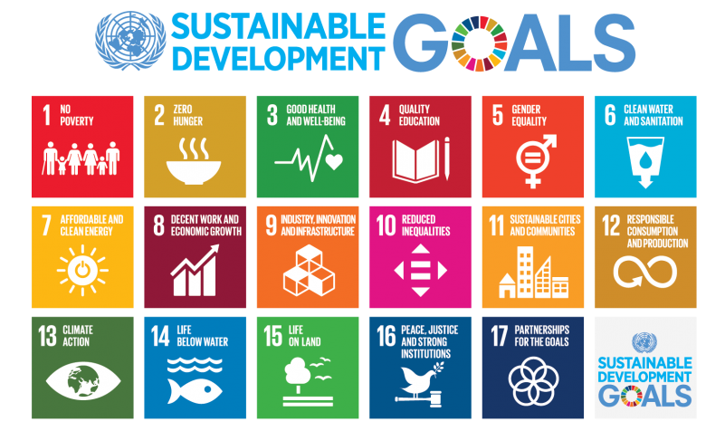 Sustainability Strategy SDGs
