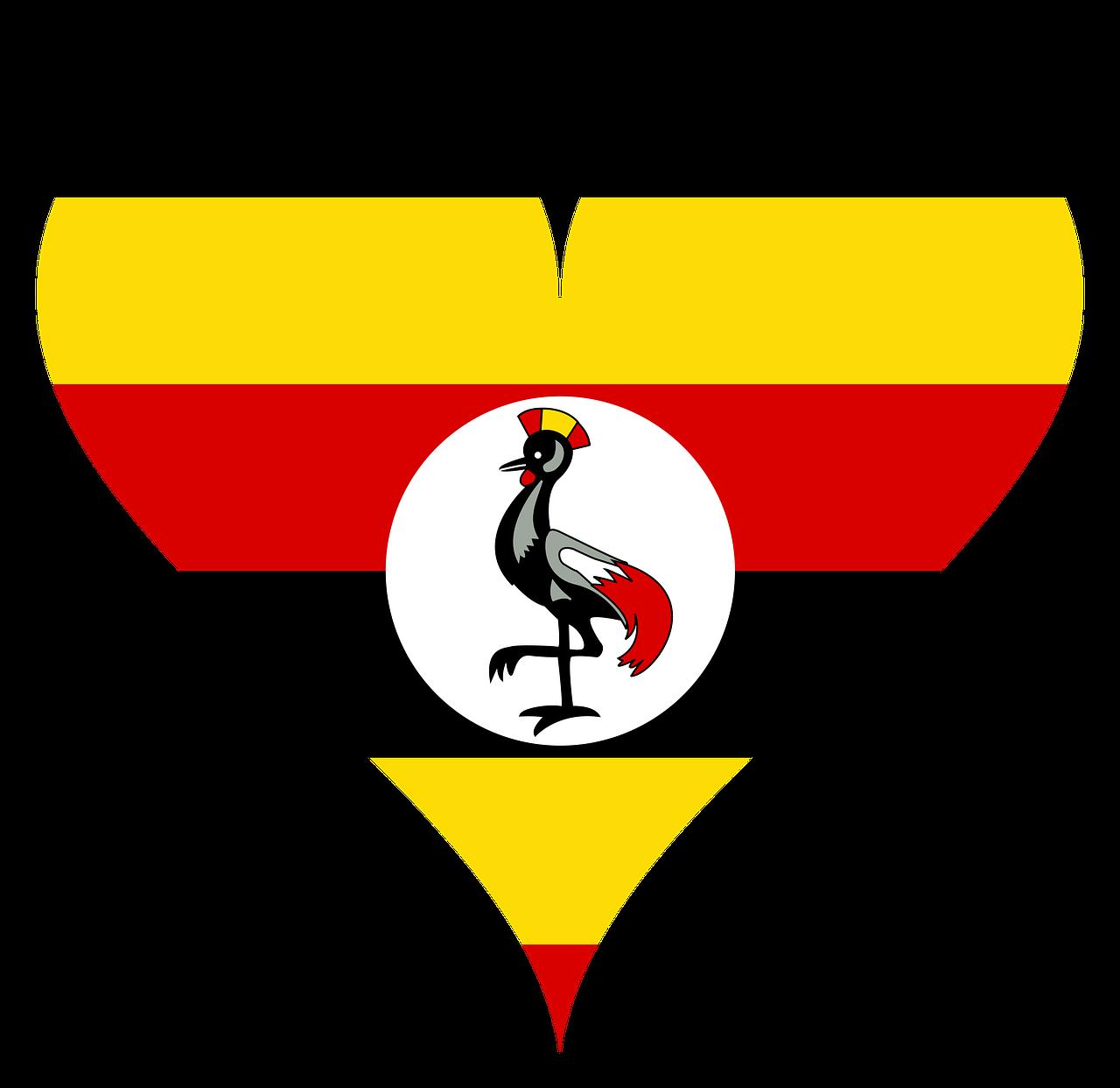 Kisiizi Partners